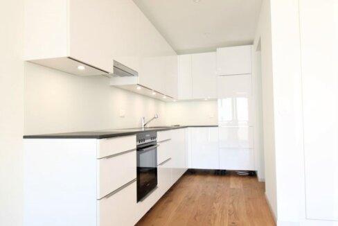 AA's Immobilien-3.5 Zi Whg-Brig-Glis (60)