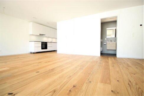 AA's Immobilien-3.5 Zi Whg-Brig-Glis (75)