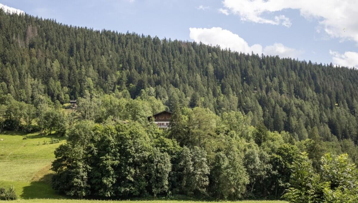 AA's AG-Immobililen-Zweifamilienhaus-Fieschertal (107)