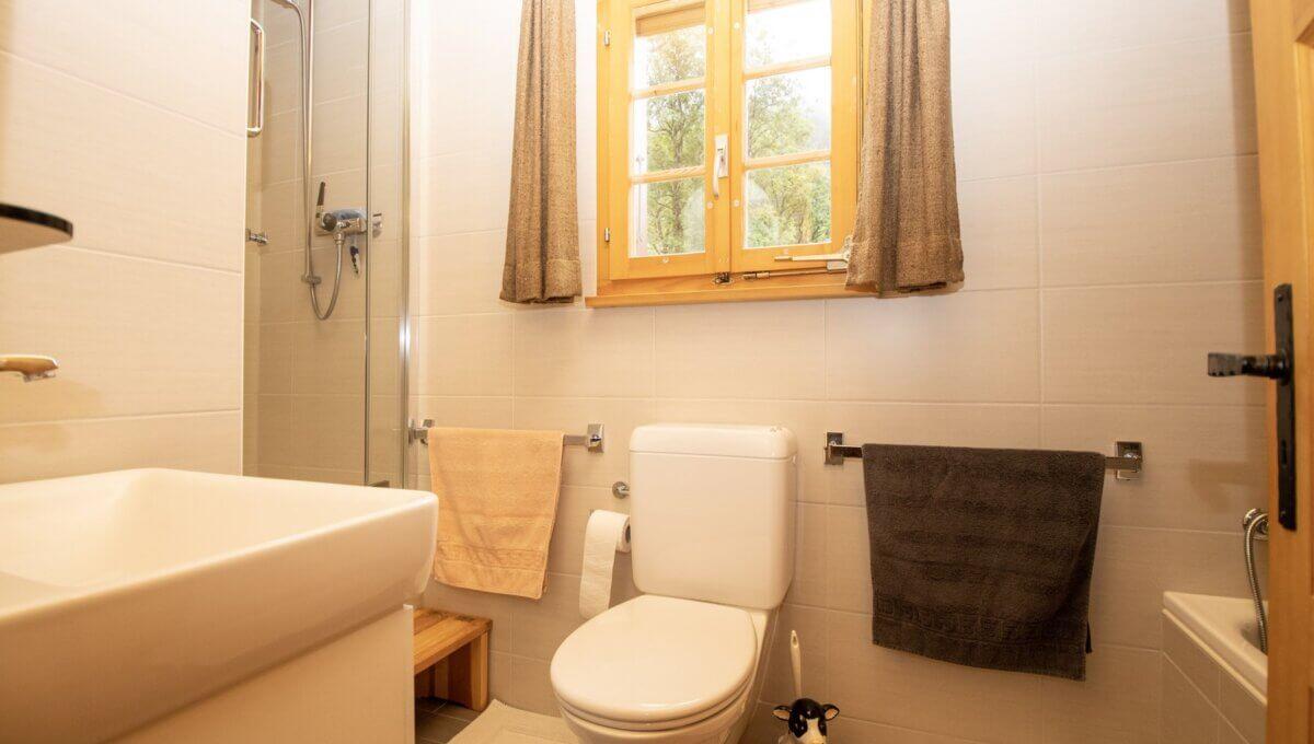 AA's-Immobilien-Zweifamilienhaus-Fieschertal (14)